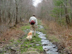 Man hikes with dog