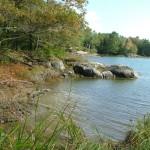 Cross Cushing Nature Preserve