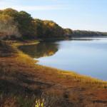 Riverview Hayfields Preserve