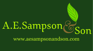 A.E. Sampson and Son