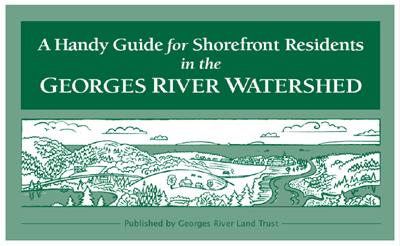 Shorefront Guide