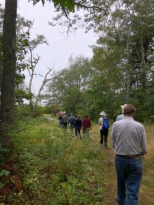 People on invasives walk