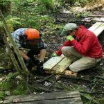 Seeking Trail Volunteers
