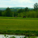 New Easement Fills in Conservation Block