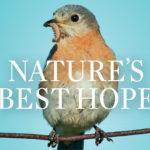 Nature's Best Hope Video - Doug Tallamy
